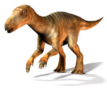 恐竜と地球の物語   恐竜図鑑   イグアノドン